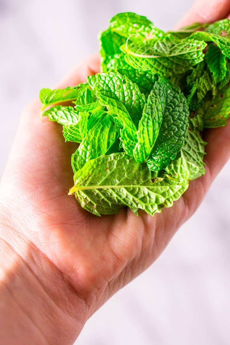 A hand holding a pile of fresh mint leaves.